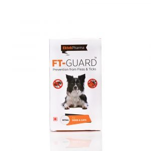FT-GUARD TABLET
