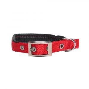 Nylon Dog Collar with Padding