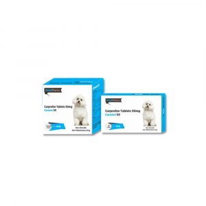 OSTEOARTHRITIS-MEDICINE-FOR-DOGS-ALL4PETS
